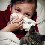 Аллергия на животных –  если не хочешь расставаться с домашним питомцем