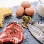 Что нужно знать о белковой диете