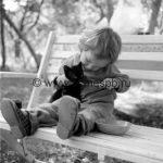 Инфекции, которые передаются от кошек