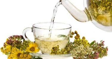 5 видов трав для похудения