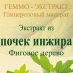 Почки инжира фиговое дерево геммо-экстракт