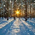 Доктор рассказал, чем компенсировать зимой недостаток солнца